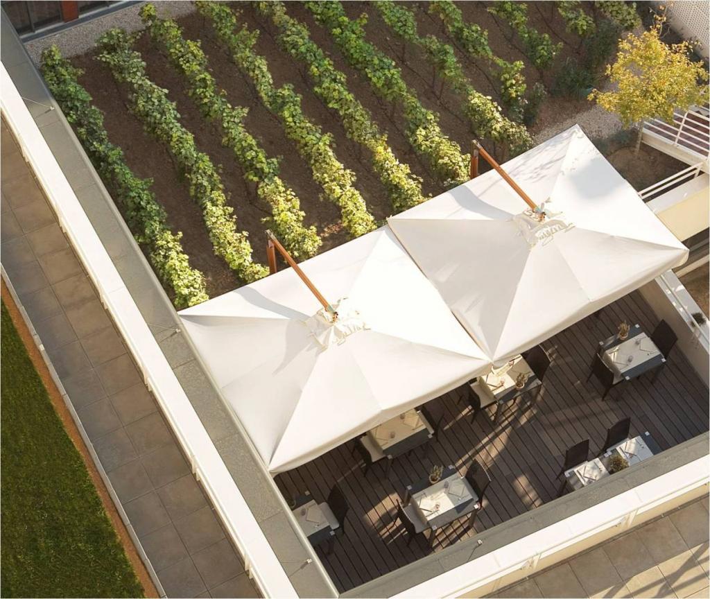 Ombrellone laterale per ristorante Palladio Braccio SCOLARO